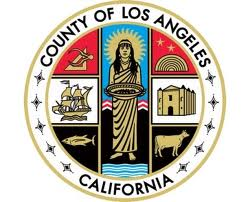 county of LA fleece throw